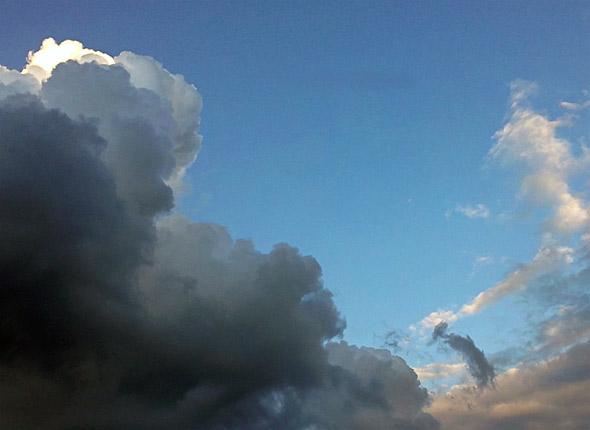 Delfin in den Wolken, (c) Daniel Bockshecker